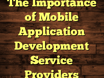 The Importance of Mobile Application Development Service Providers